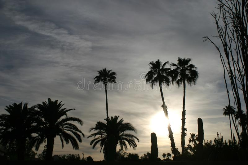 Пустыня Аризоны на сумраке стоковая фотография rf