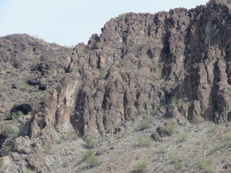 Пустыня Аризоны стоковое изображение