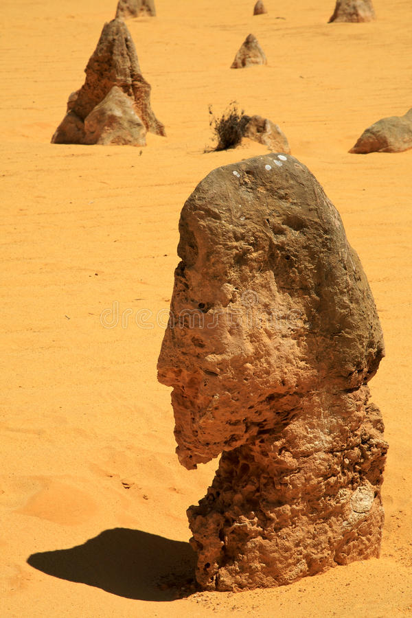 Пустыня башенк стоковое фото rf