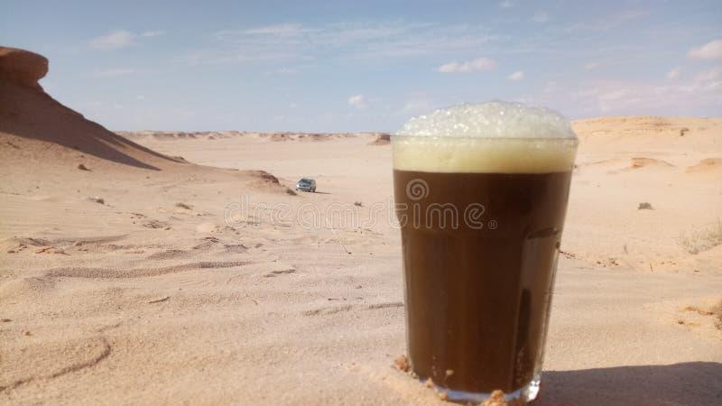 пустыня бдительности стоковое фото rf