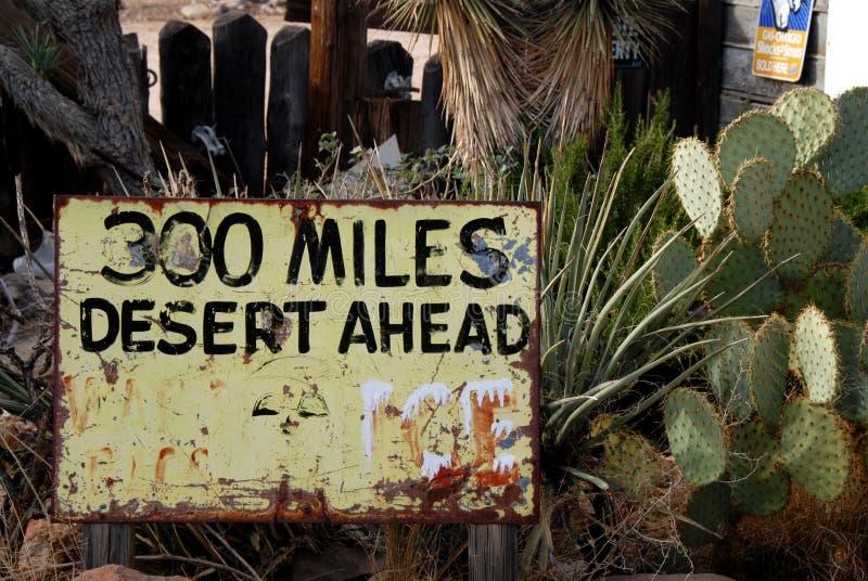 Пустыня вперед стоковые фотографии rf