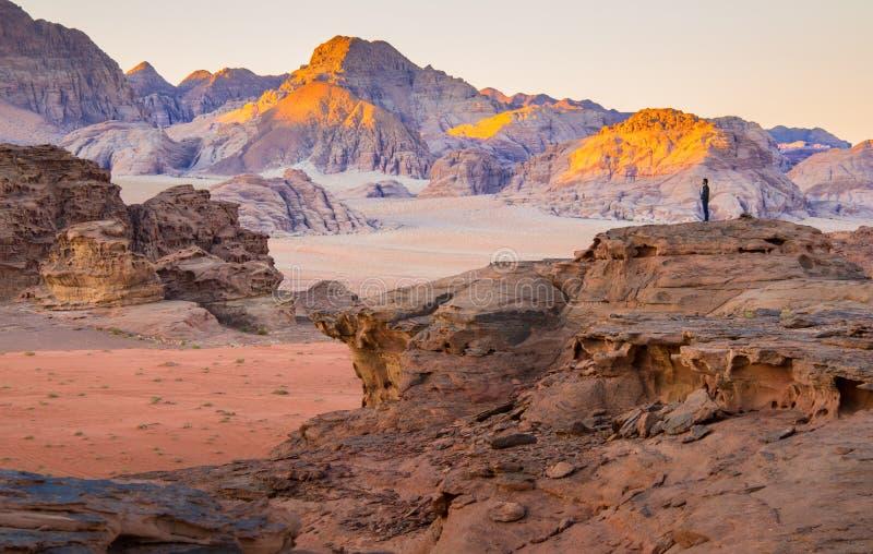 Пустыня в утре стоковое фото rf
