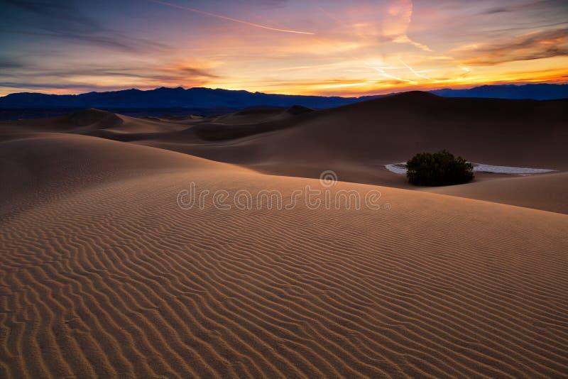 Пустыня в Mesquite плоском, национальном парке Death Valley, США стоковое фото rf