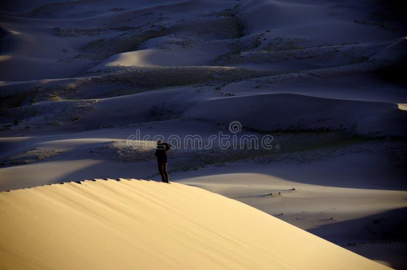Пустыня Гоби стоковое изображение rf