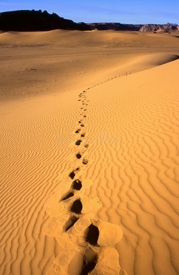 пустыня Ливия стоковое фото rf