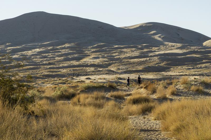 Пустыня Мохаве, взгляд песчанных дюн стоковая фотография
