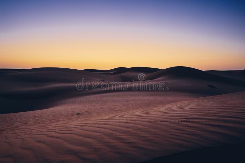 Пустыня перед восходом солнца стоковые фотографии rf