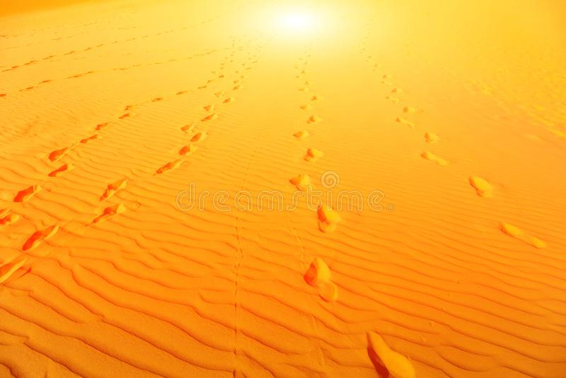 Пустыня песчанной дюны блеска Солнца стоковое фото rf