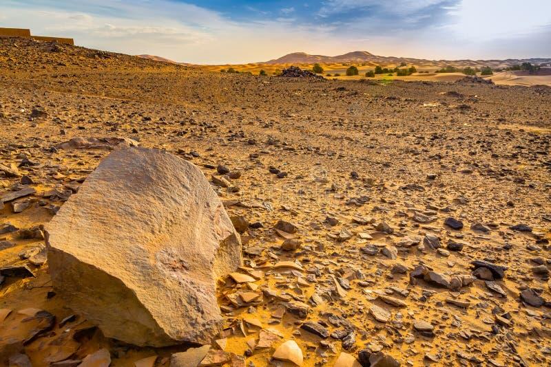 Пустыня Сахара Hamada в Марокко стоковые изображения