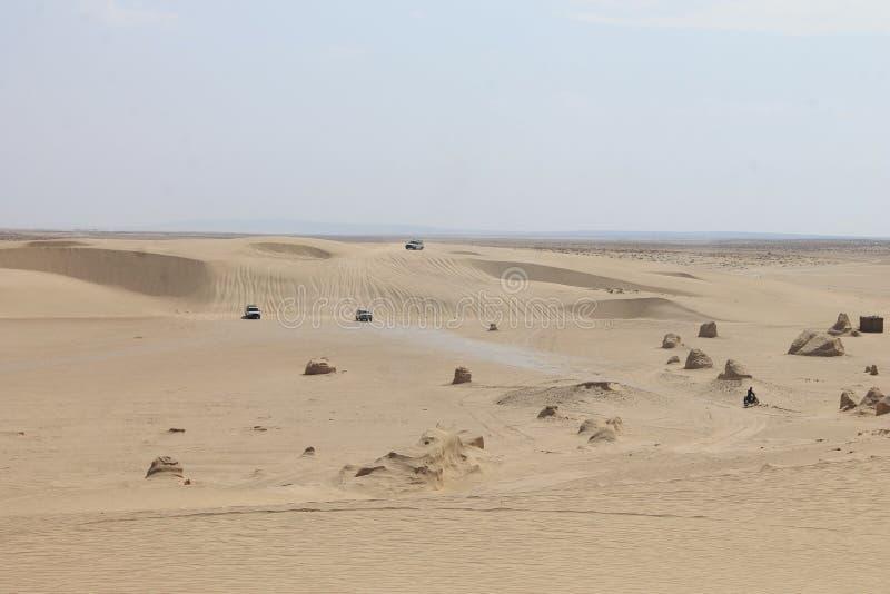 Пустыня Сахары Тунис, Ghlissia Kebili стоковые изображения rf