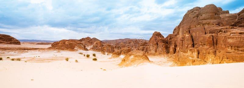 Пустыня Синай песка панорамы, Египет, Африка стоковая фотография