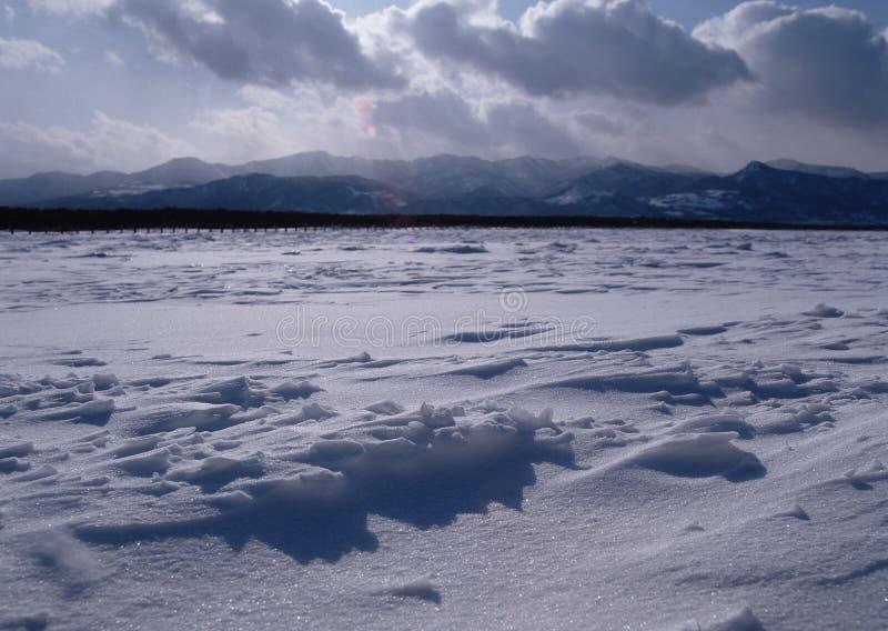 Пустыня снега стоковая фотография