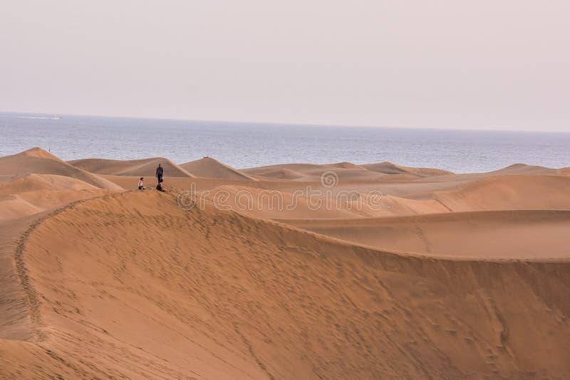 Пустыня с песчанными дюнами в Гран-Канарии Испании стоковое изображение rf