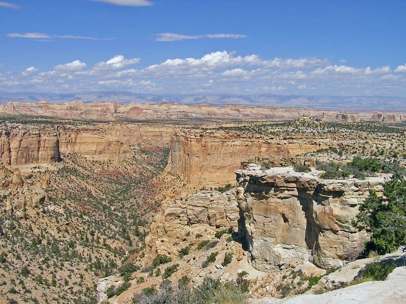 пустыня Юта каньонов стоковые изображения