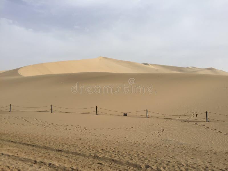 Пустыня Gebi стоковые фотографии rf