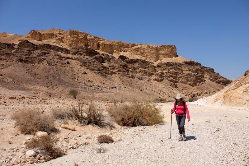 пустыня hiking negev стоковые изображения rf