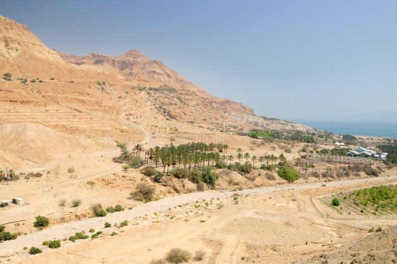 Download пустыня judean стоковое фото. изображение насчитывающей ландшафт - 41650270