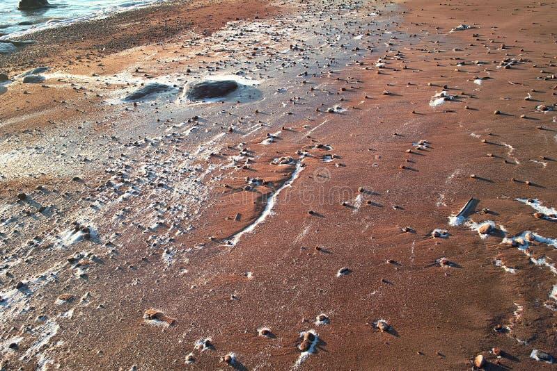 пустыня martian quasi каменистый стоковая фотография rf