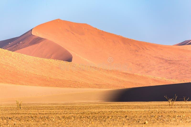 Пустыня Namib, Sossusvlei на заходе солнца стоковые фото