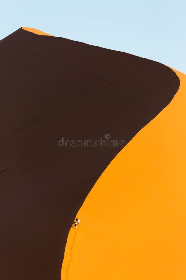 Пустыня Namib, Sossusvlei на заходе солнца стоковые фотографии rf