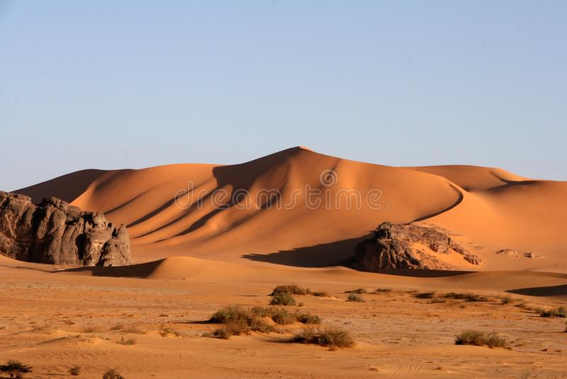 пустыня scenes14 стоковые изображения