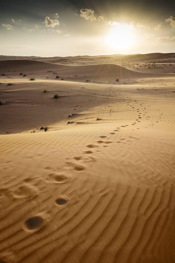 Пустыня Wahiba Оман захода солнца стоковые фотографии rf