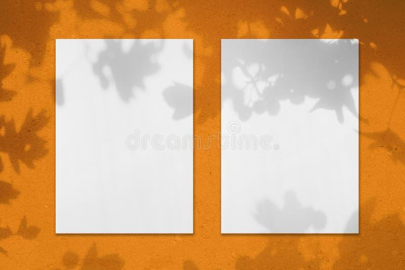 2 пустых белых вертикальных модель-макета плаката прямоугольника с тенями листьев стоковые фото