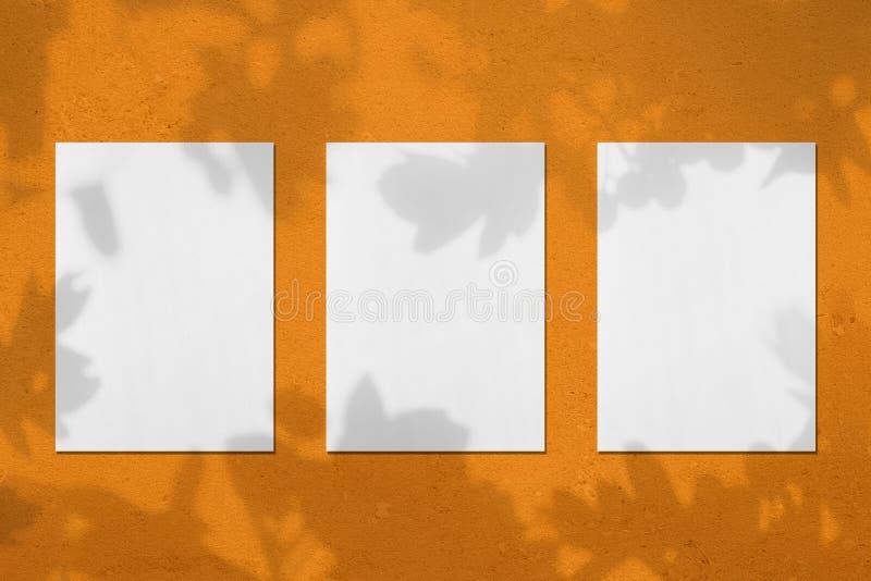 3 пустых белых вертикальных модель-макета плаката прямоугольника с тенями листьев стоковое изображение