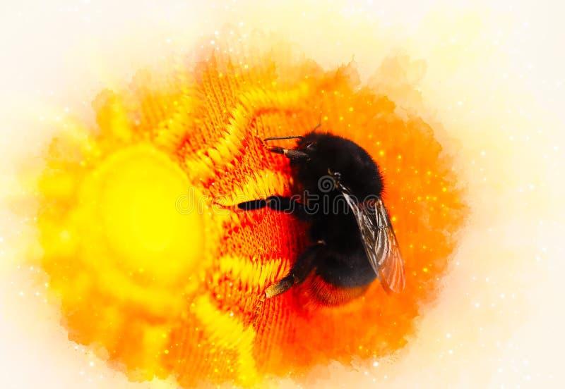 Путайте пчела сидя на яркой оранжевой ткани с картиной солнца и мягко запачканной предпосылкой акварели иллюстрация вектора
