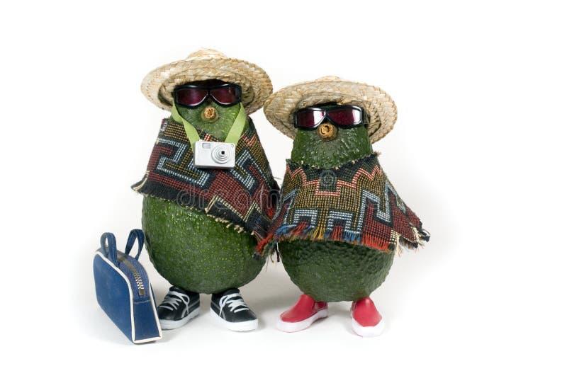 путешественники авокадоов стоковое изображение