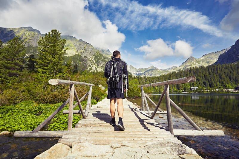 Путешественник в горах стоковое фото