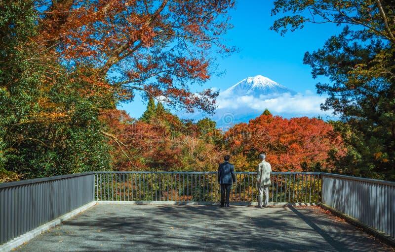 Путешественник смотря Mt Фудзи и красочные лист осени на падениях Shiraito в Fujinomiya, Shizuoka, Японию стоковое изображение