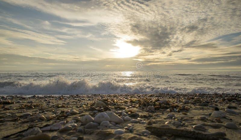 путешествие 2 малых птиц над морем к заходу солнца стоковое изображение