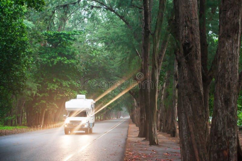 Путешествовать в campervan на дороге сосны на сумраке стоковое изображение rf