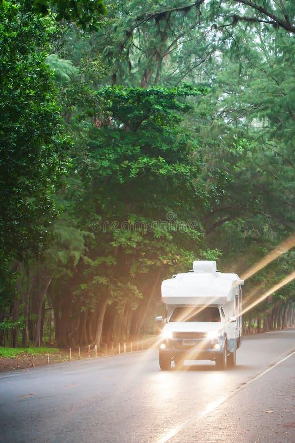 Путешествовать в campervan на дороге сосны на сумраке стоковая фотография rf