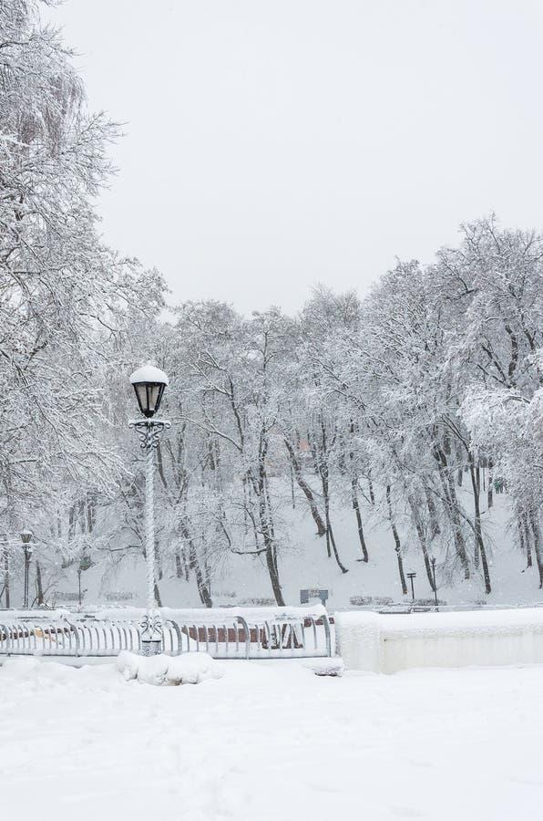 Пути и деревья покрытые с снегом Сиротливое стоящее aga фонарика стоковые изображения rf