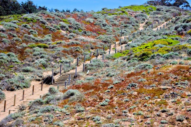 Путь вверх по it& x27 jk горы; s холм стоковая фотография