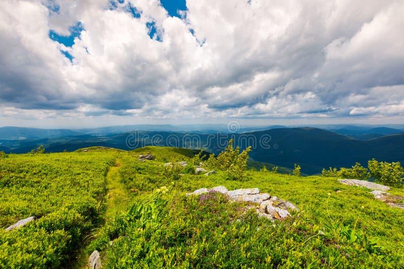 Путь вдоль травянистого наклона na górze горы стоковое фото