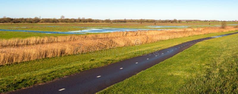 Путь велосипеда рядом с голландскими заболоченными местами в осени стоковое изображение