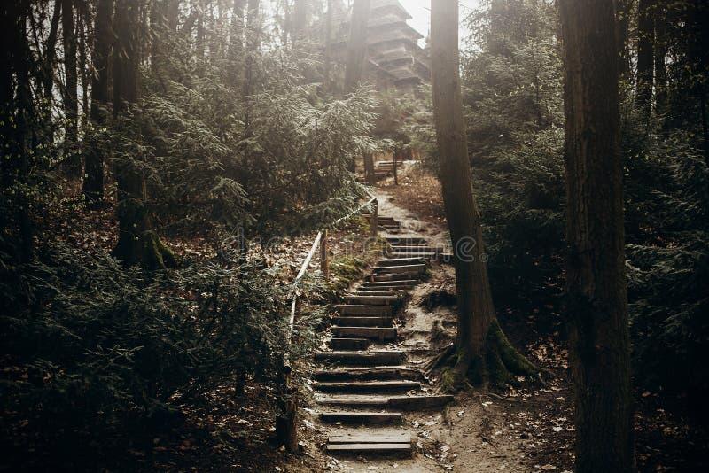 Путь в горах, каменная лестница лестниц природы для пешего туризма l стоковая фотография