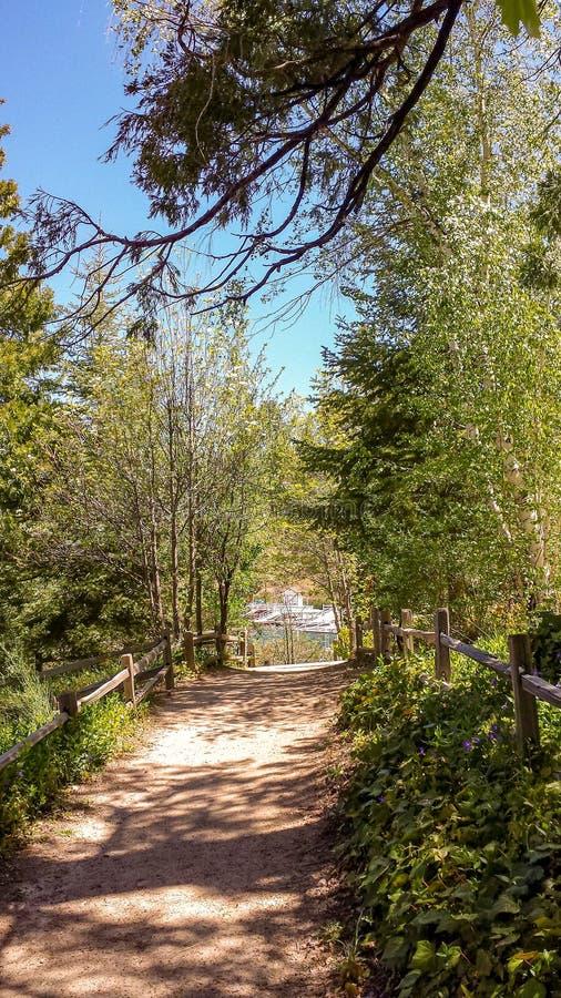 Путь горы вокруг наконечника озера, Калифорнии стоковые фото