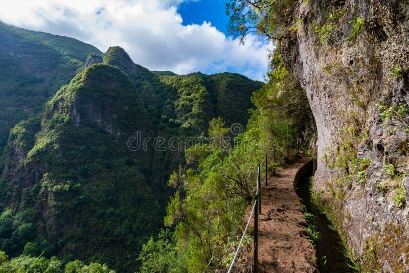 Путь горы Мадейры пеший стоковое фото