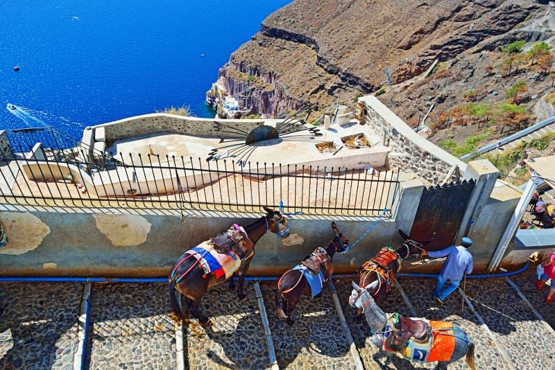 Путь Греция лестниц осла острова Santorini стоковое фото rf