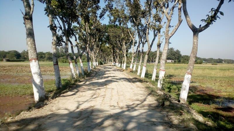 Путь деревень стоковые фото