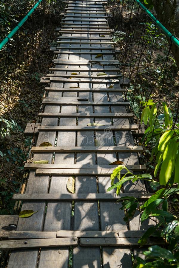 Путь деревянного моста через джунгли дерева с рельсом веревочки, листьями дерева и тенью завода стоковое изображение