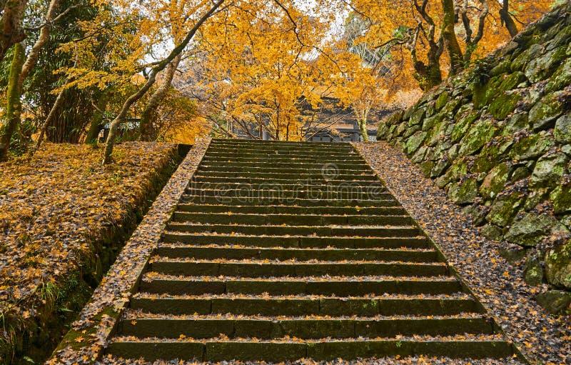 Путь лестницы в осени стоковые фотографии rf