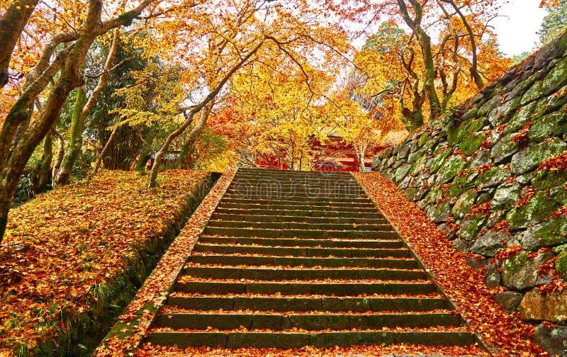 Путь лестницы в осени стоковое фото rf