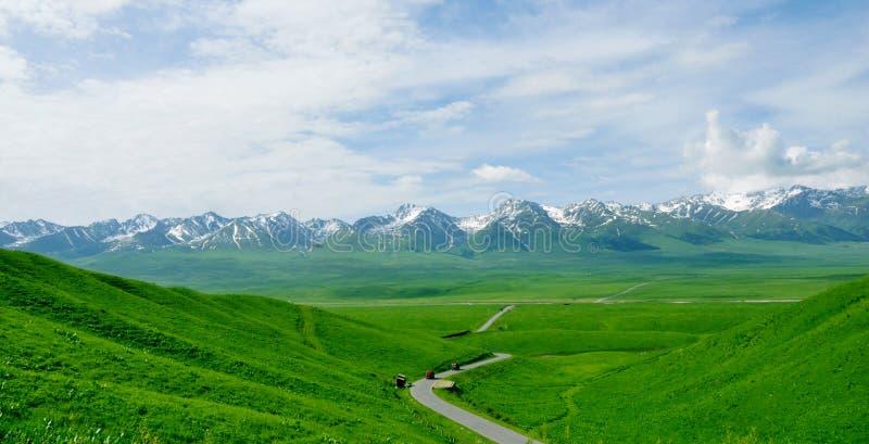 Путь замотки, оно принять нас к дороге лотоса снега Tianshan стоковое фото