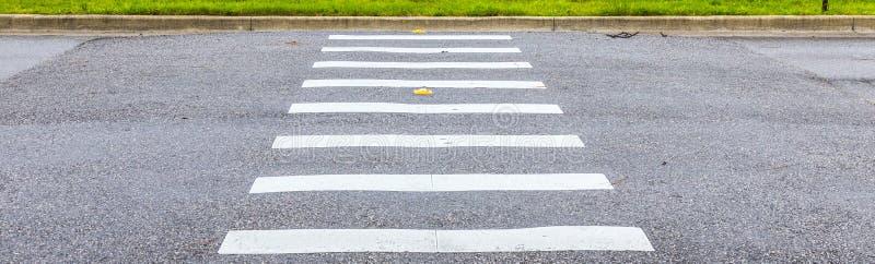 Путь зебры на дорожном покрытии асфальта стоковое изображение rf