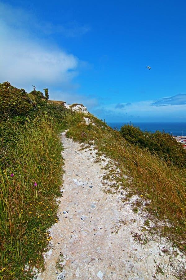Путь известняка идя вдоль белых скал Дувра при чайка летая сверх стоковые изображения rf